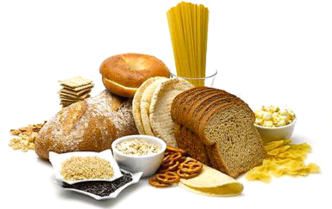 thenutritiondr-1 | carbohydrates basic fuel, Human Body