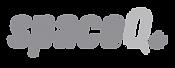 SpaceQ-Logo_grey.png