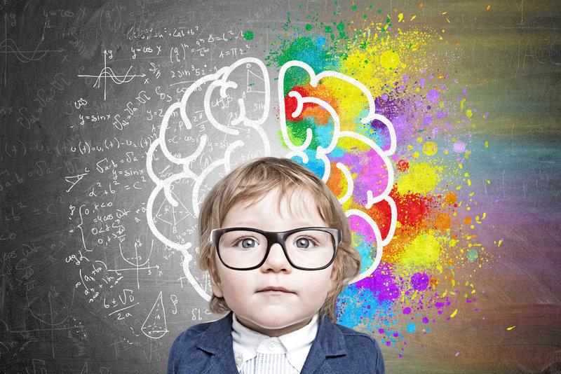 O Cérebro da Criança