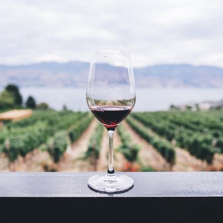 2020年11月美味しいワイン会