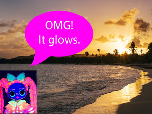 Outing #10: The Glow-in-the-Dark Sea