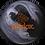 Thumbnail: TRACK PARADOX BLACK