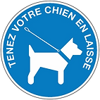 chien.png