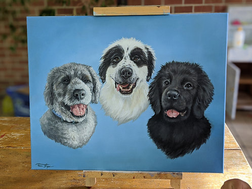 "THREE Pet Portrait, 9"" x 12"" or larger, 3 pets on one canvas"