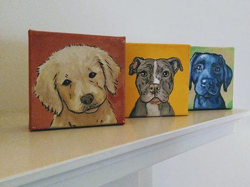 """6"""" x 6"""" Cutie Pet Portrait, deep canvas"""