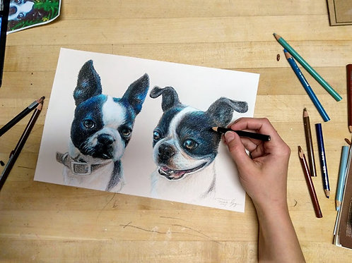 "Double Pet Portrait, 9"" x 12"" colored pencil pet portrait, full color"
