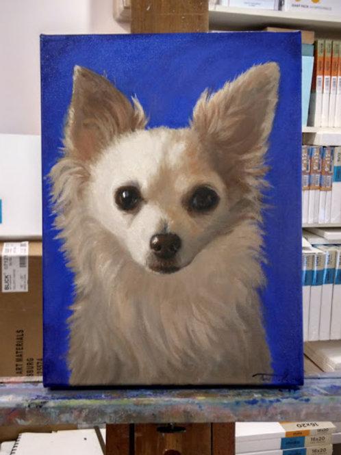 Medium Hand painted Pet Portrait