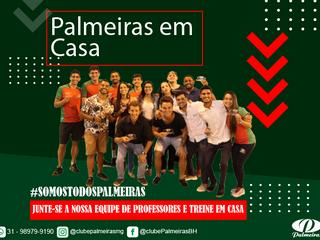 Palmeiras em Casa!!!