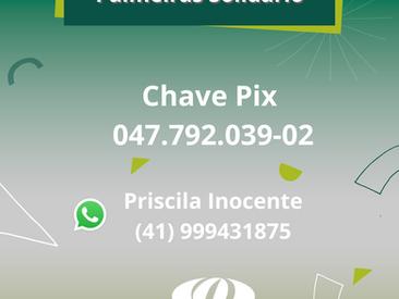Palmeiras Solidário