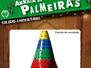 PAREDE DE ESCALADA NO ESPAÇO KIDS DO ARRAIÁ DO PALMEIRAS !!!