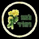 לוגו_נגה_והוד-removebg-preview.png
