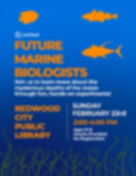 Marine-bio-workshop