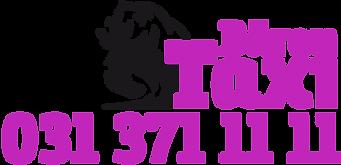 logo_baerentaxi_web.png