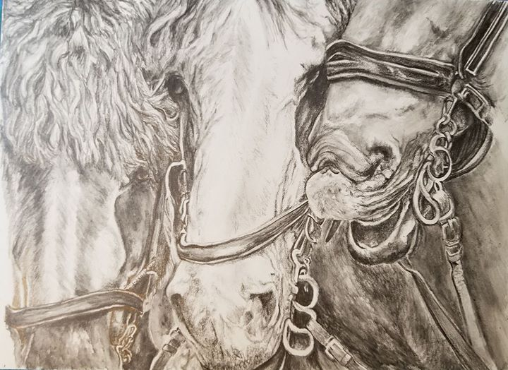 Horsing Around - Water soluble graphite