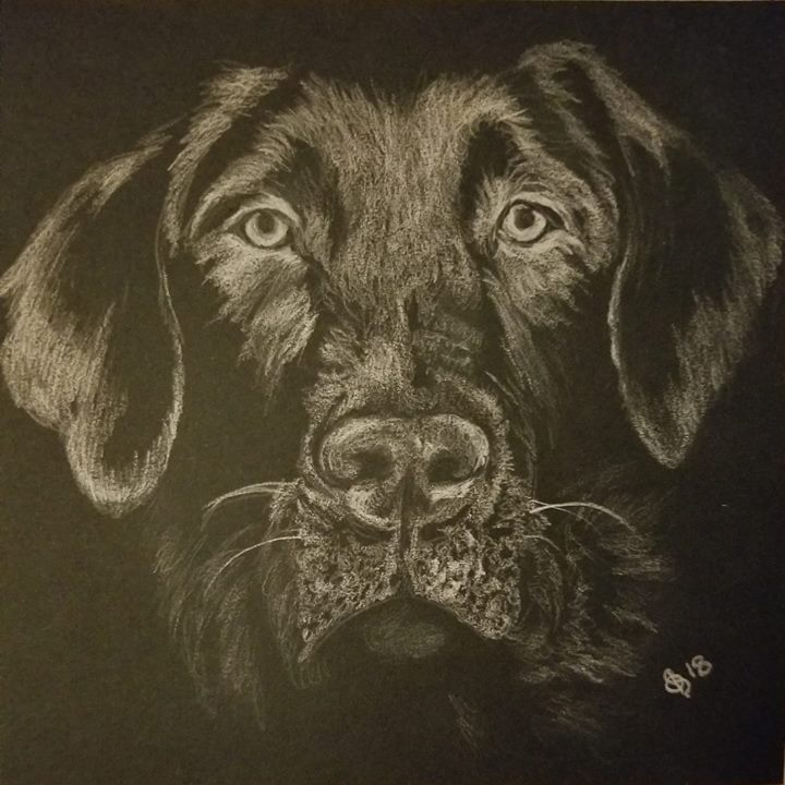 My Henry. Polychromos white pencil on St