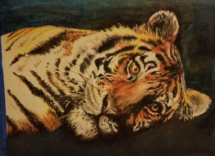 Tiger, watercolor pencils on hot pressed