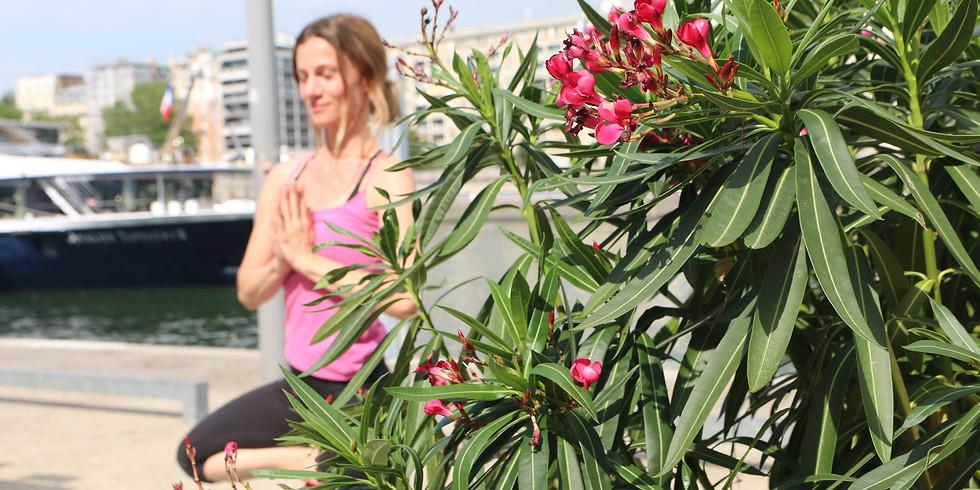 Cours de Hatha Yoga en plein air tous les dimanches