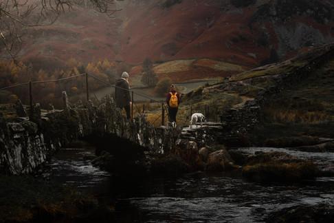 Dalmatian And Owner Langdale