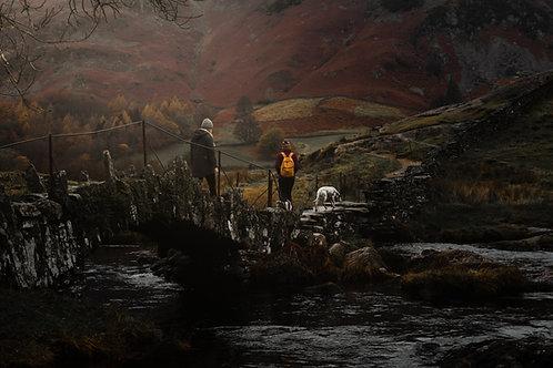 Landscape Pet Photography In The Lake District, Dalmatian, Fine Art Print