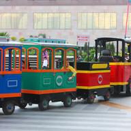 Miniature Train ride