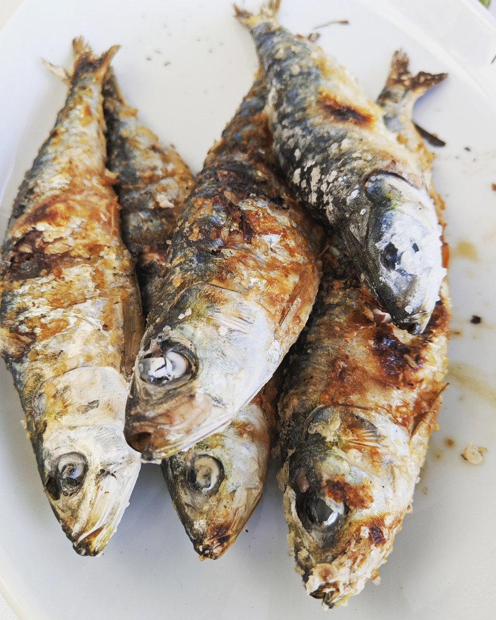Portugal, Porto sardines