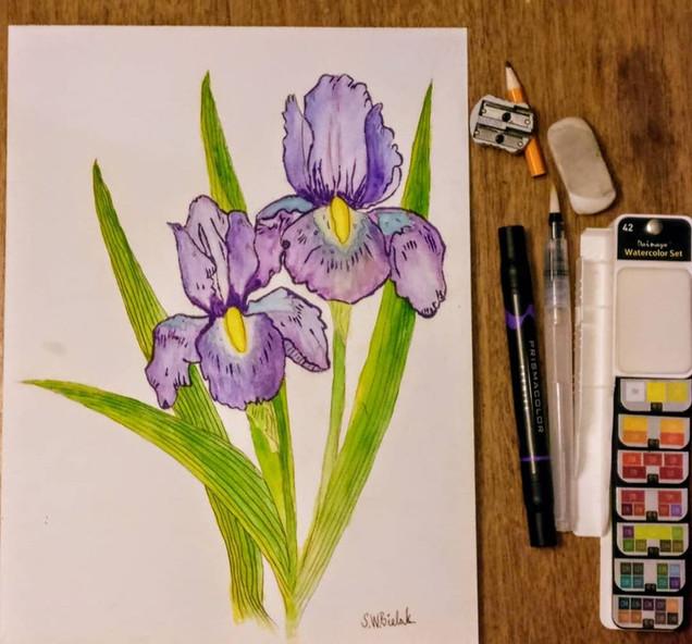 Pair of Purple Iris's 46818561_102149708
