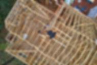 Constructionpic.jpg