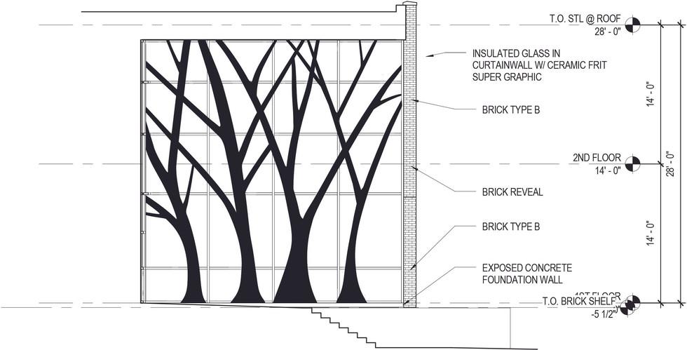 Tree Tree Design Graphic Development
