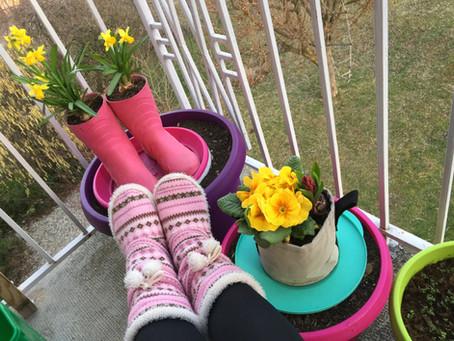 Jardiner en pantoufles, c'est possible !