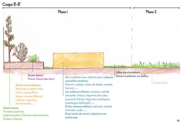 micro-jardin-perma-2.jpg