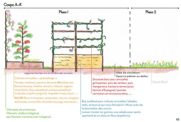 micro-jardin-perma-1.jpg