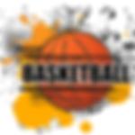 logo-baskılı-basketbol-topları_edited.pn