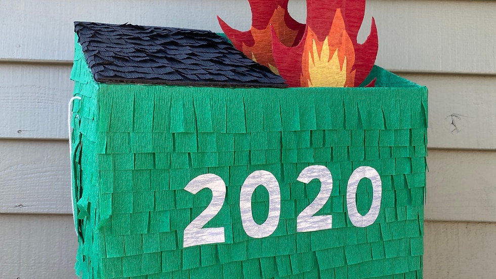 2020: Tales of a Dumpster Fire