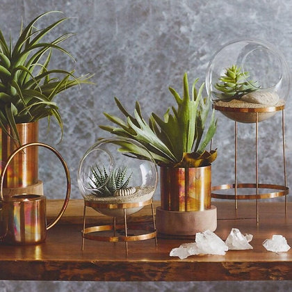 Copper Glass Terrarium