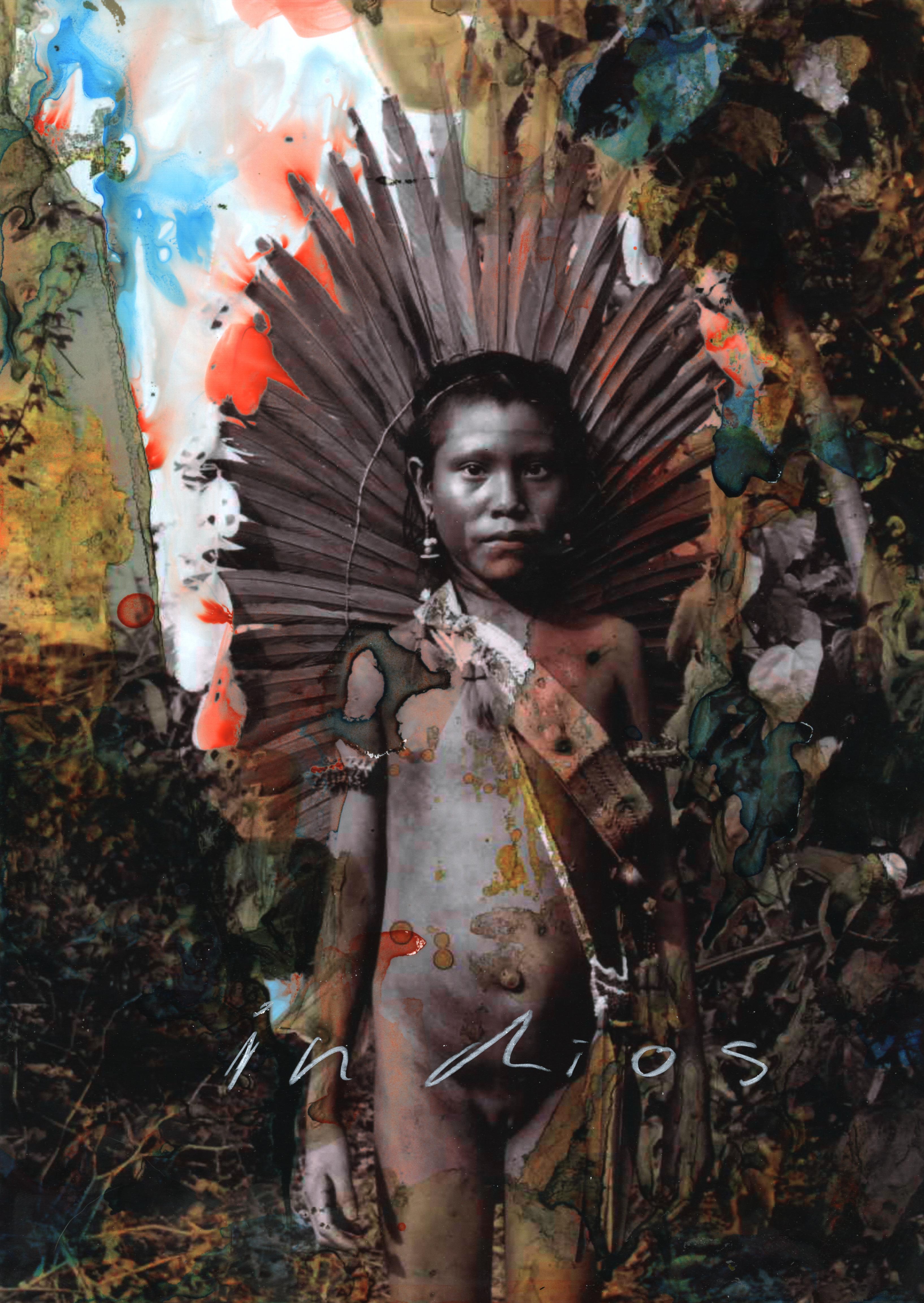 Amazonian Memory / Human Elegy