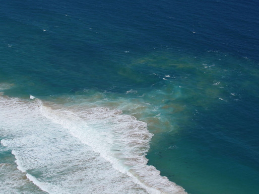 BEACH SAFETY- RIP CURRENTS - KNOW YOUR OPTIONS