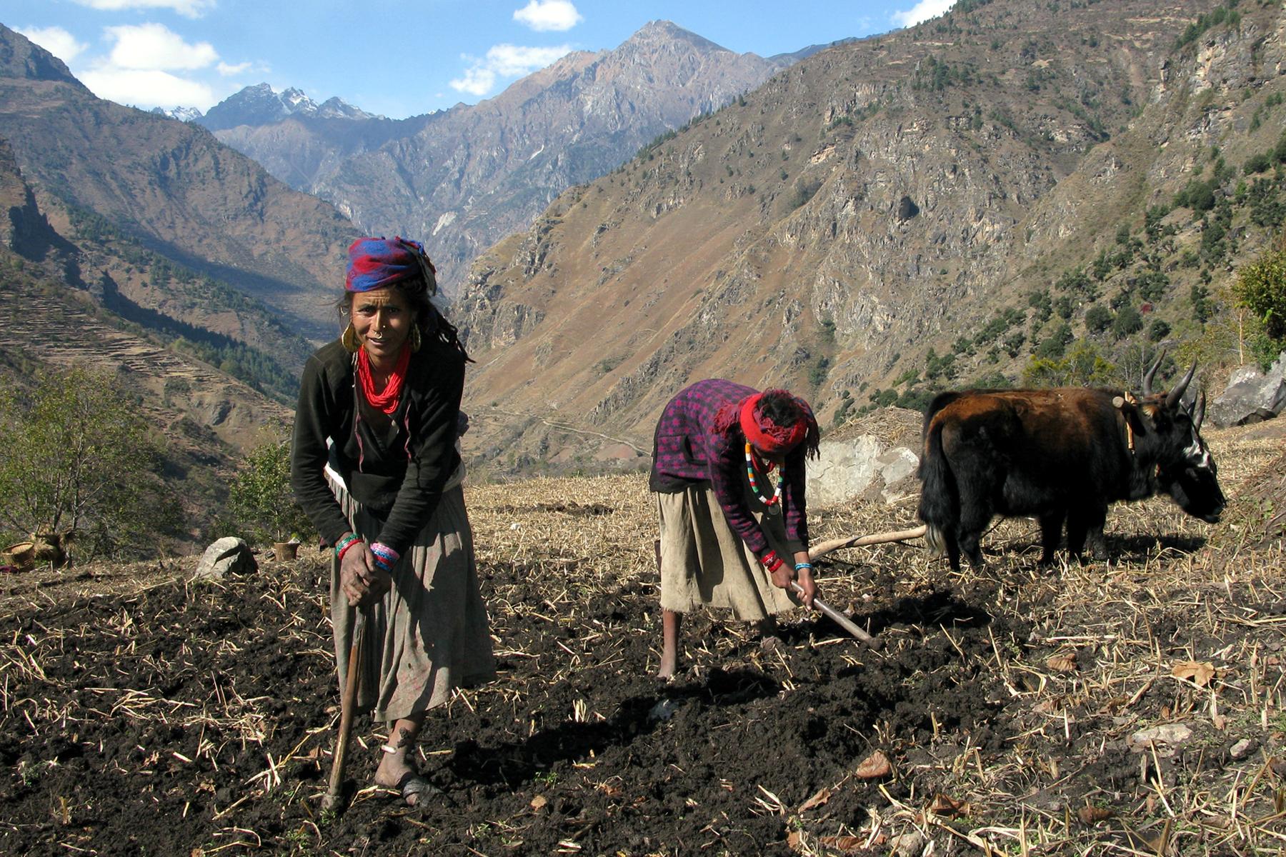 Chetri Women Humla Nepal