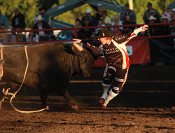 RODEO - Life On The Circuit