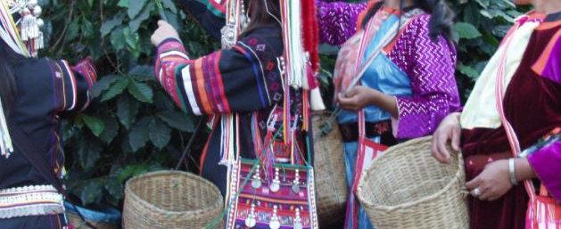 Thailand Baan Doi Chaang - Akha Villagers - Per Kg