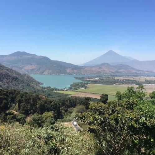 Guatemala Cooperativa Todosantarita Huehuetenango SHB - Per Kg