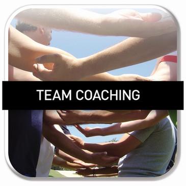 Valori In Corso-Formazione-Team Coaching