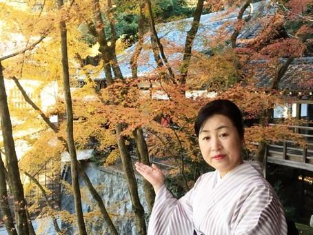 紅子の京都散策「永観堂」