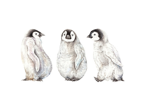Penguins Limited Edition Print 8.5x11 Watercolor bird baby painting