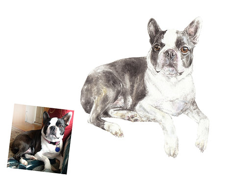 CUSTOM Watercolor Pet Portrait Original Painting