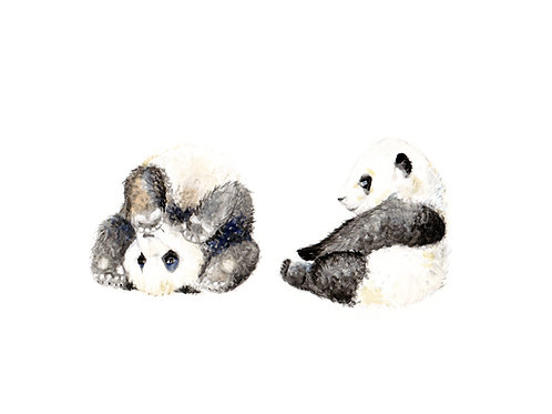 Panda Cubs Limited Edition Print 8.5x11 Watercolor