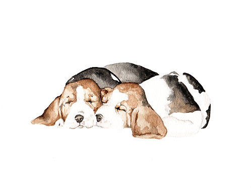 Beagles Limited Edition Print Watercolor Choose from 2 Images