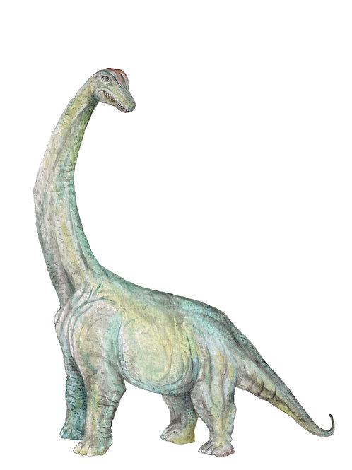 Dinosaur Brachiosaurus T Rex Prehistoric Choose from 2 Watercolors