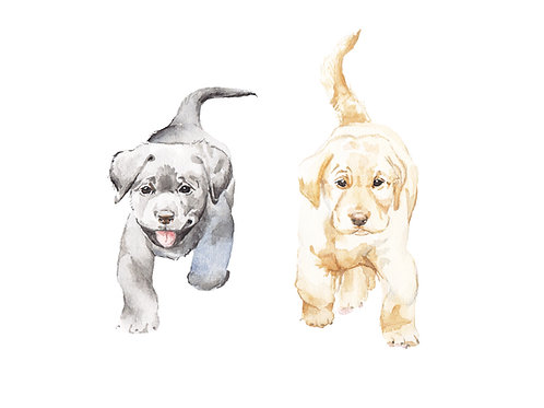 Yellow and Black Lab Puppies Ltd Ed Print Watercolor