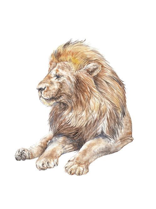Elegant Lion Limited Edition Print 8.5x11 Watercolor & Original Watercolor
