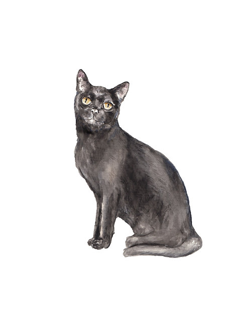 Black Cat Ltd Ed Watercolor Art Print -choose from 2 images!